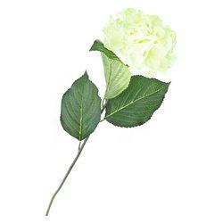 Hortenzie zelená, plast